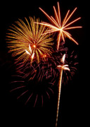 4th July Metal Prints - Fireworks 1 Metal Print by Michael Peychich