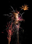 Yellow Fireworks Prints - Fireworks Print by Cindy Singleton