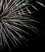 4th July Photo Prints - Fireworks Fun 10 Print by Marilyn Hunt