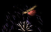 4th July Photo Prints - Fireworks Fun 2 Print by Marilyn Hunt