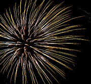 4th July Photo Prints - Fireworks fun 6 Print by Marilyn Hunt