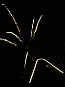 Williams Photo Originals - Fireworks by Inessa Burlak