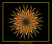 Bottle Of Colors Posters - Fireworks Kaleidoscope 1 Poster by Rose Santuci-Sofranko