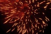 Fireworks Light Up The Sky While Celebrating Bastille Day Print by Sami Sarkis