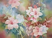 Hibiscus Prints - First Blush Print by Deborah Ronglien