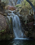 Las Vegas Landscape Framed Prints - First Creek Falls Framed Print by Mark Christian