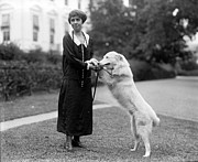 Grace Photos - First Lady Mrs. Grace Coolidge by Everett