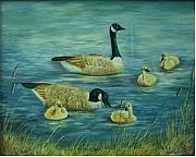 Baby Mallards Originals - First Lesson by Wanda Dansereau