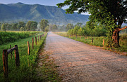 Country Lanes Photo Prints - First Light - Sparks Lane at Cades Cove Tennessee Print by Thomas Schoeller