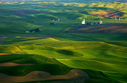 Hills Photo Posters - First light on the Palouse Poster by Mike  Dawson