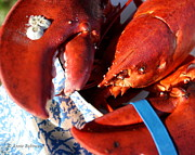 Anne Babineau - first lobster of the year