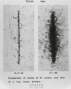 Emulsion Prints - First Photo Of Ultraheavy Primary Cosmic Ray Print by Professor Peter Fowler