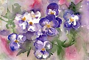 Johnny Jump Up Pansy Painting Posters - First Sign Of Spring Poster by Marias Watercolor