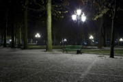 Vichy Framed Prints - First snow in park near Opera Framed Print by Alexander Davydov