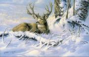 Snow Scene Oil Paintings - First Snow by Kathleen  V  Butts