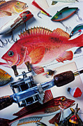 Fishing Rod Prints - Fish bookplates and tackle Print by Garry Gay