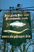 Bier Framed Prints - Fish Framed Print by Flavia Westerwelle