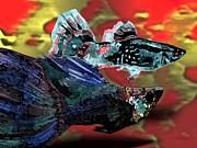Fish In Digital Art Print by Mario  Perez