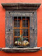 Portal Framed Prints - Fish in the Window Framed Print by Olden Mexico