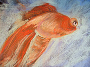 Lisa Dionne Art - Fish by Lisa Dionne