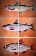 Animals Ceramics Prints - Fish Mural On Terracotta Tiles Print by Andrew Drozdowicz