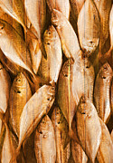 Wooden Building Prints - Fish Pattern On Wood Print by Setsiri Silapasuwanchai
