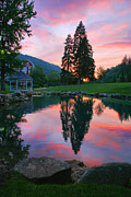 Fish Print Prints - Fish Pond At Sunset I Print by Steven Ainsworth