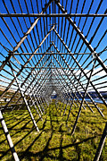 Lofoten Islands Photos - Fish Rack by Heiko Koehrer-Wagner