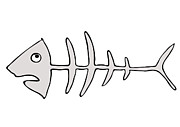Humorous Drawings Posters - Fish skeleton - fishbones Poster by Michal Boubin