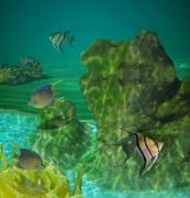 Fish Digital Art Originals - Fish Tank by Margit Gentile