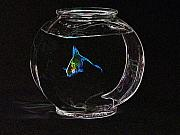 Fish Bowl Prints - Fishbowl Print by Tim Allen