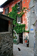 Cobblestone Prints - Fishermans Isle Italy Print by Peter Tellone