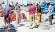 Essaouira Paintings - Fishermen with Nets at Essaouira by Brian Fleming