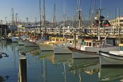 Boats In Harbor Prints - Fishermens Terminal San Francisco Print by Stuart Westmorland