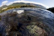 British Columbia Prints - Fisheye Seascape Print by Dave Fleetham