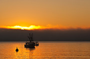 Atlantic Ocean Metal Prints - Fishing Boat At Sunrise Metal Print by Steve Gadomski