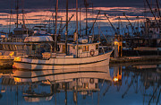 Fishing Boat Print by Jim  Hatch