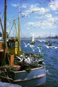 Flying Seagull Prints - Fishing Boat Print by The Irish Image Collection