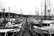 Piers Prints - Fishing Boats . 7D8202 Print by Wingsdomain Art and Photography