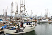 Sail Boats Prints - Fishing Boats in Pillar Point Harbor at Half Moon Bay California . 7D8194 Print by Wingsdomain Art and Photography