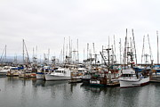 Sail Boats Prints - Fishing Boats in Pillar Point Harbor at Half Moon Bay California . 7D8196 Print by Wingsdomain Art and Photography