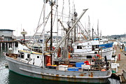Sail Boats Prints - Fishing Boats in Pillar Point Harbor at Half Moon Bay California . 7D8206 Print by Wingsdomain Art and Photography