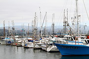Sail Boats Prints - Fishing Boats in Pillar Point Harbor at Half Moon Bay California . 7D8208 Print by Wingsdomain Art and Photography