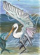 Sea Birds Pastels Framed Prints - Fishing Egret Framed Print by Stu Hanson
