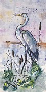 Gloria Avner - Fishing Heron