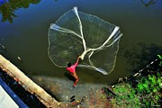 Vinod Nair - Fishing Net