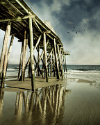 Flying Bird Metal Prints - Fishing Shack Pier Metal Print by Jody Trappe Photography