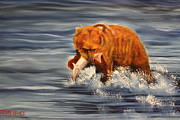 Kodiak Bear Paintings - Fishing by Terry Lewey