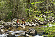 Wade Fishing Prints - Fishing the Little Pigeon River - D005193 Print by Daniel Dempster