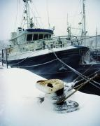 Snowed Prints - Fishing Trawler, Howth Harbour, Co Print by The Irish Image Collection